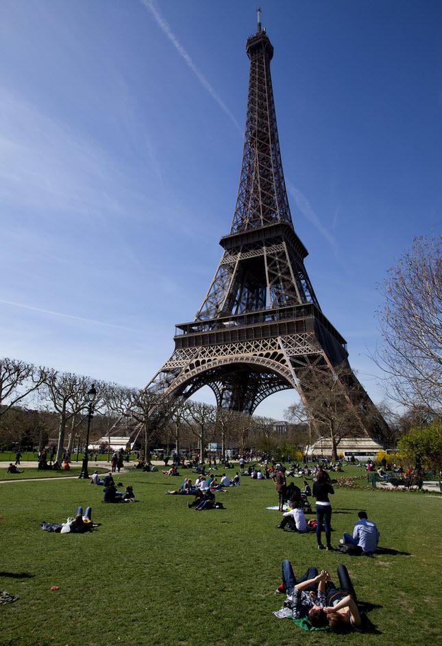 Eiffel Tower picnic spot