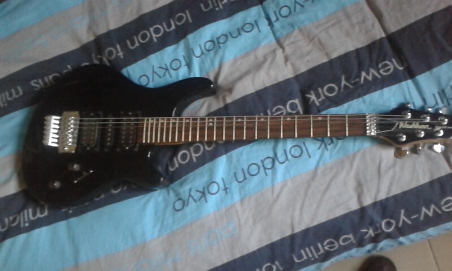 Troc Echange Guitare Lectrique Washburn Sur