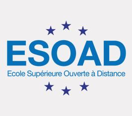Focus sur le Master Européen de Management et Stratégie Touristique de l'ESOAD