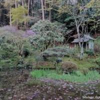 岩船寺で秘仏に癒されレトロ建築うっとり関西ぶらり旅
