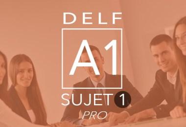 DELF Pro A1