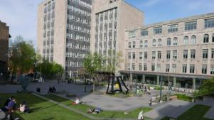 Parc ouvert Université Mc Gill