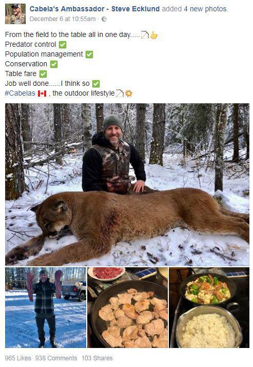 Sur Facebook, Steve Ecklund pose avec le puma qu\'il vient de tuer et cuisiner.