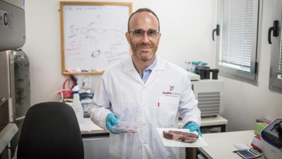 Le fondateur de la start-up israélienne Aleph Farms, Didier Toubia, présente une boîte de Petri et une assiette avec un steak de viande in vitro, le 8août 2018.