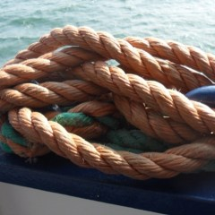 Brittany Ferries Économie – Review
