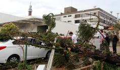 Árvore atingiu dois veículos e a rede elétrica próximo à Prefeitura