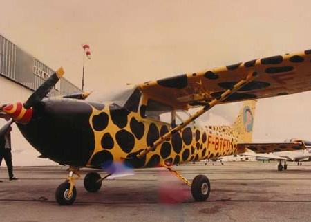 """""""Le Bourdon"""" - Cessna 172 de mon ami Jako... et Jakote - 1987"""