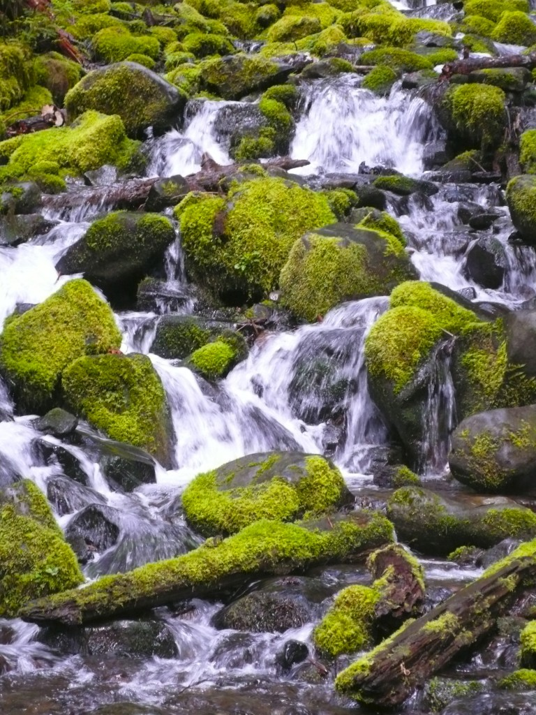Waterfalls and Mossy Rocks