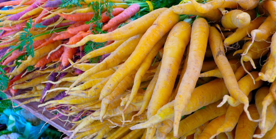 Beautiful Carrots and Roots