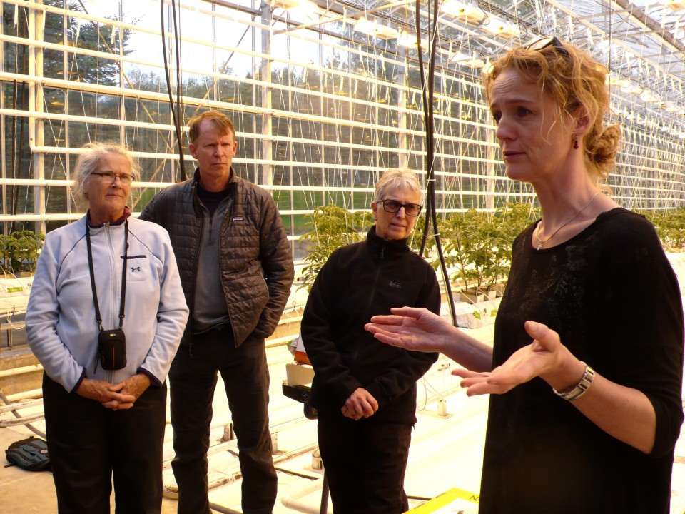 Helena passionately explains how the greenhouses work!  She and her husband have run the green houses for 20 years.