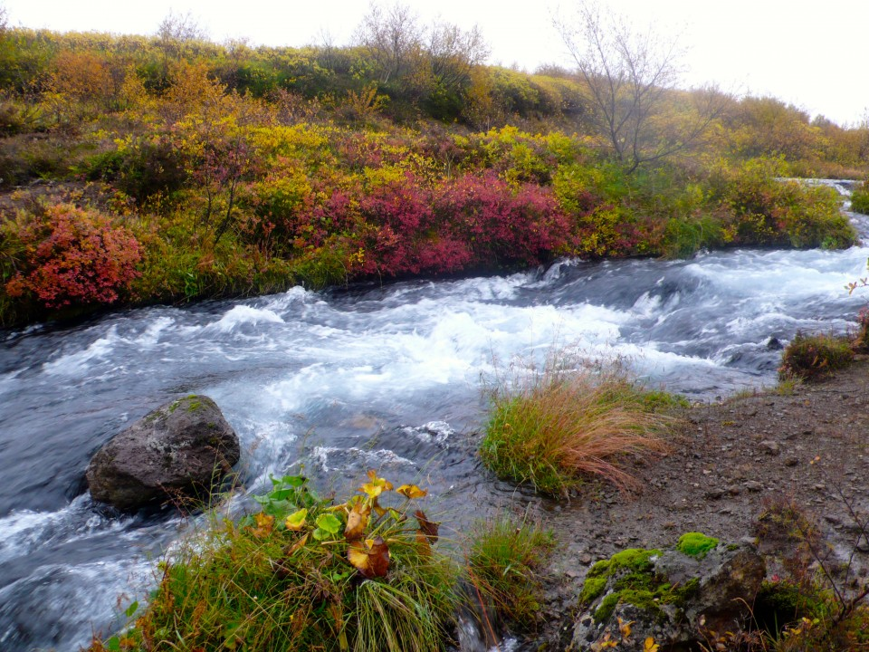 Heather and red leaves along rushing rivers and waterfalls