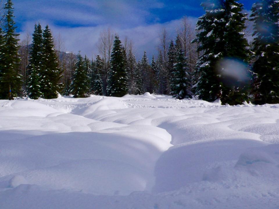 Meringue Snow
