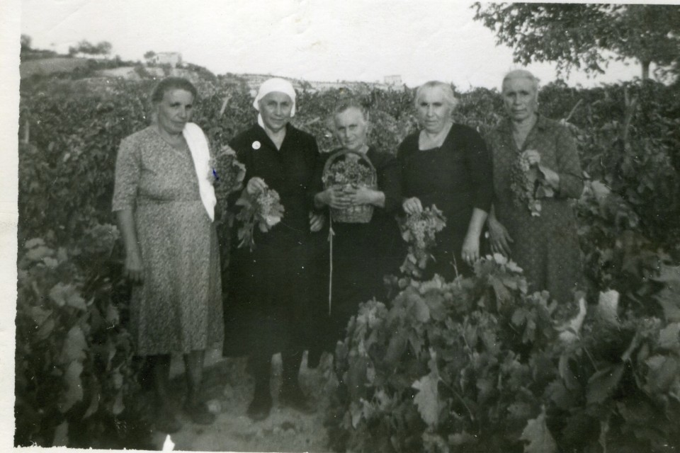 My Grandmother, Antonia Tirone Licata, and her sisters!