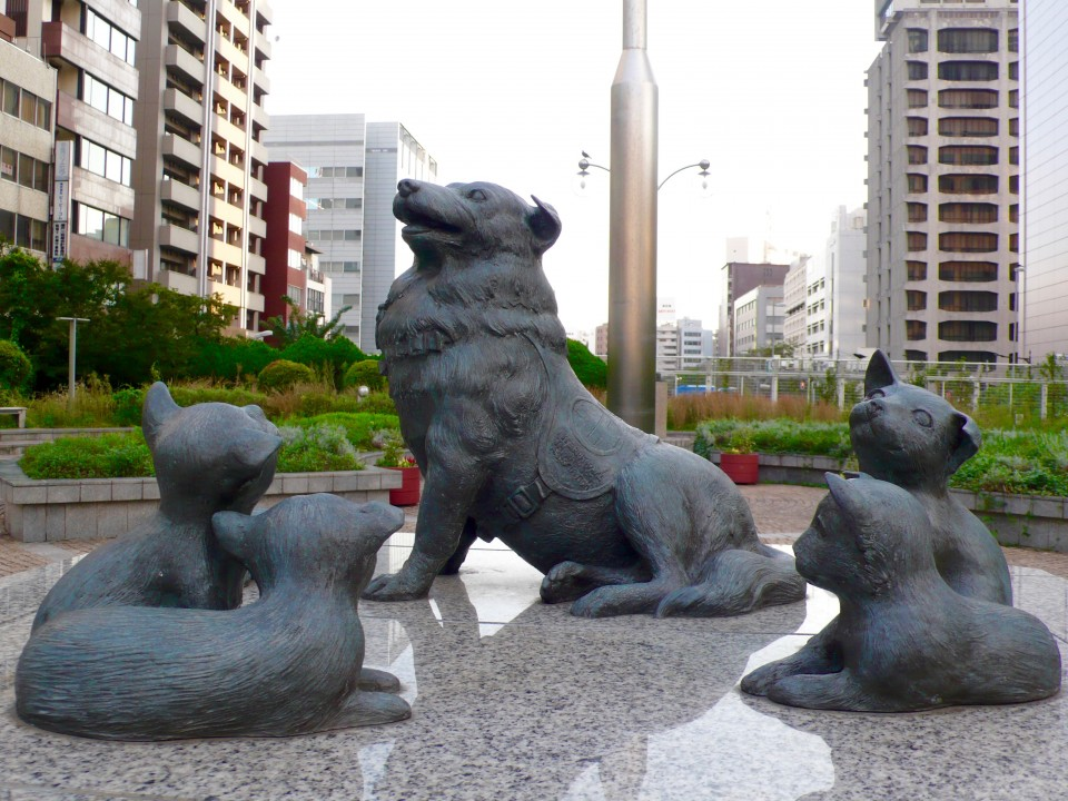 And we discovered this beautiful statue of the dog and her powerful story.  Please read below!