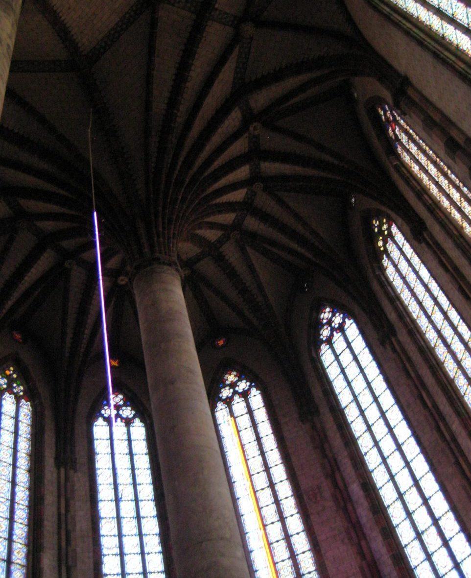 The palm at Couvent des Jacobins