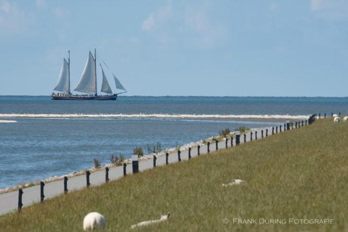 Segelschiff im Watt, Ameland, NL