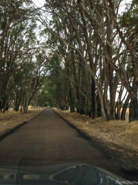 Dag.5-Ballarat-Grampians NP-12