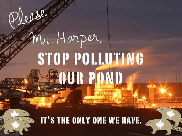 Please Mr Harper Stop Polluting the Pond. Photo David Dodge, type illustration by Franke James