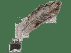 WVZ46   «La plume»   © Mag. Frank Gruber 2018