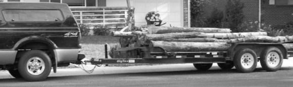 lumberB&W