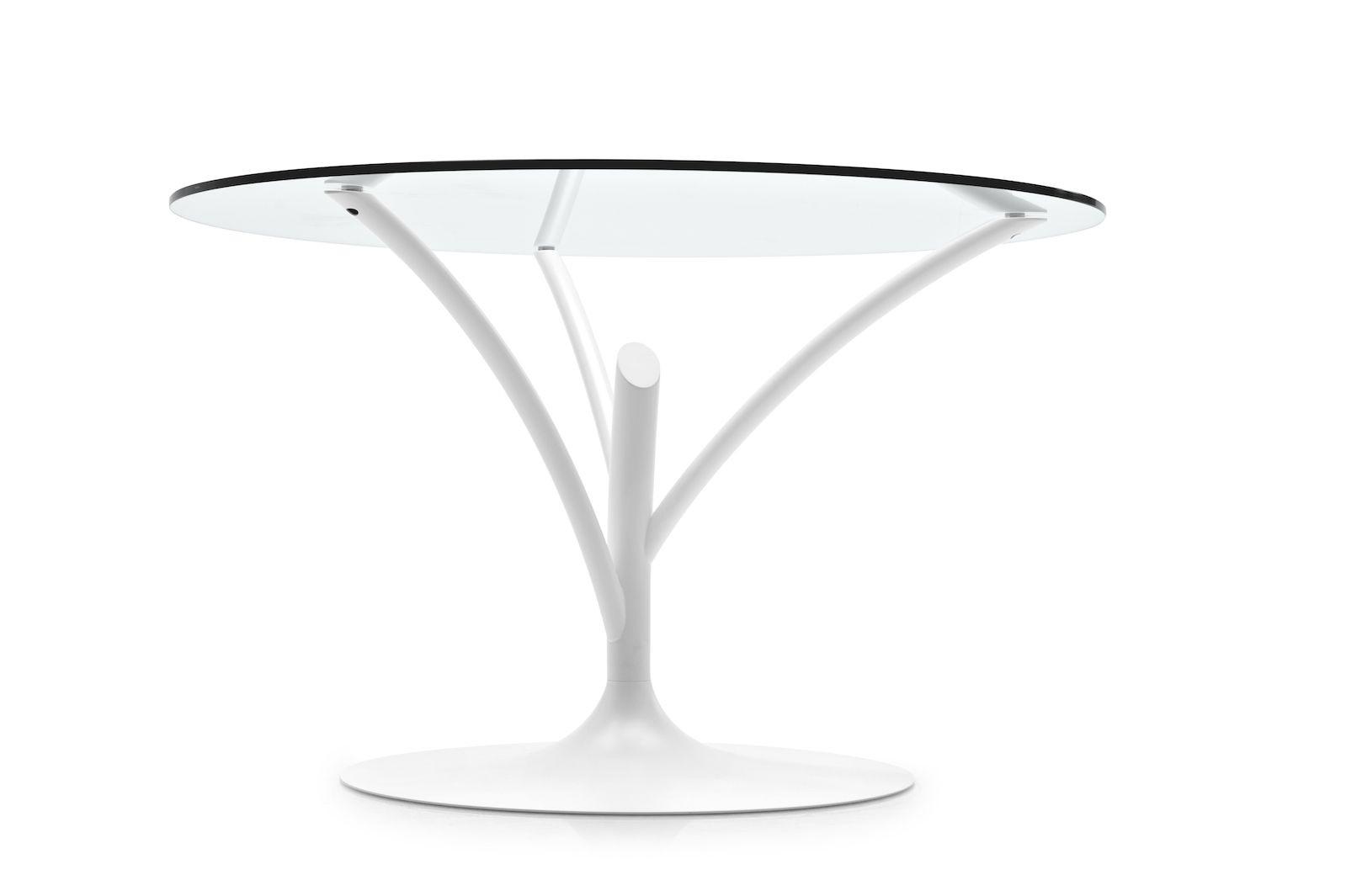 Calliagris Acacia Round Glass Table Frank Mc Gowan