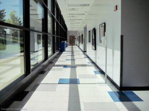 Hall Monitor 7