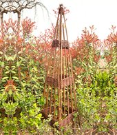 Rankobelisk aus Weide 120 cm,1 Stück