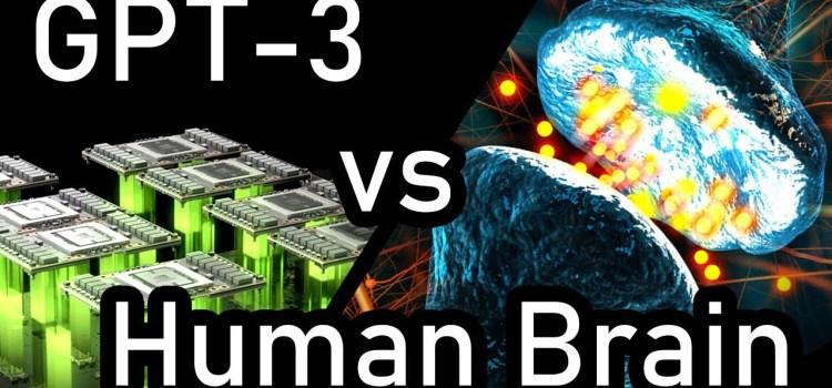 GPT-3 vs Human Brain