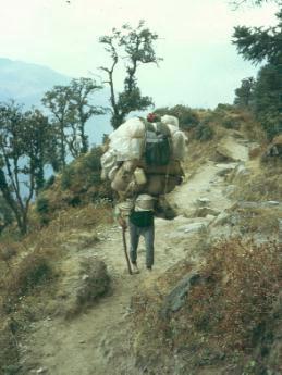 sherpa1.jpg