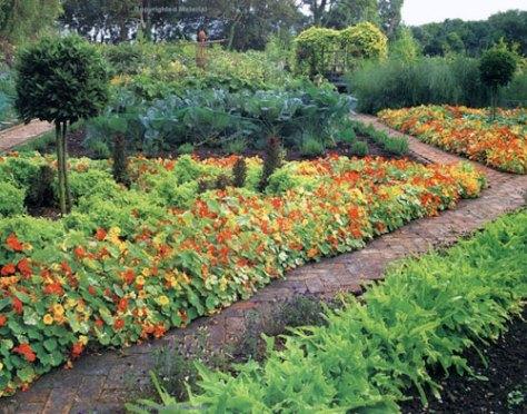 Uit het boek The new kitchen garden