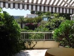Vanaf het terras heb je uitzicht op een parkachtige tuin met oude palmbomen en bloeiende bougainville