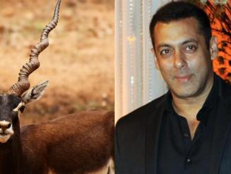 Bollywood superstar jailed for killing two endangered animals