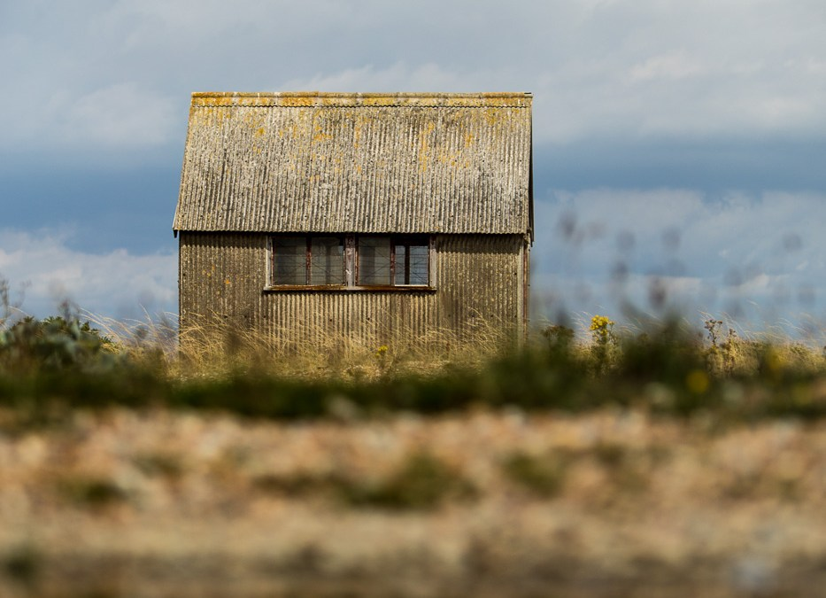 Desolate in Dungeness