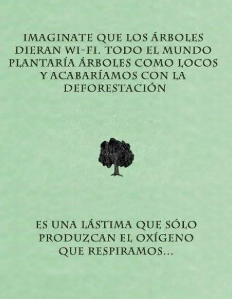 Resultado de imagen de si los árboles dieran wifi