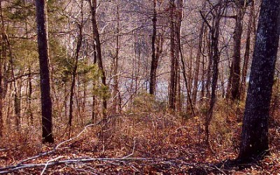 2.2 acres overlooking Center Hill Lake, White County, TN