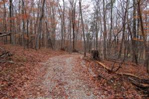 Van Buren County Land for Sale