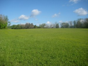 32 Acres for Sale, White County, TN