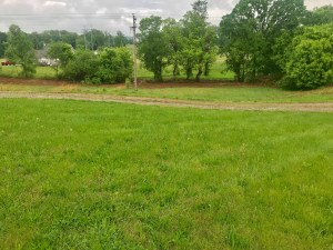 12 acres - Home - Building for Sale