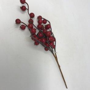 Rametto bacche spugna rossa