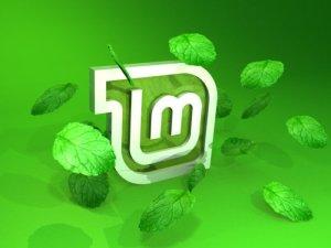 Come ottimizzare Linux Mint