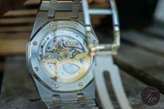 ap-royal-oak-jumbo-52mondayz-3550