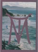 Monogram-VanDamMax