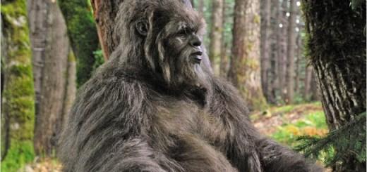 Bigfoot sighting in Vicksburg