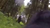 Bigfoot caught by GoPro dog