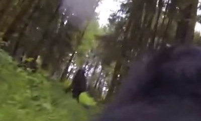 Bigfoot caught by GoPro dog