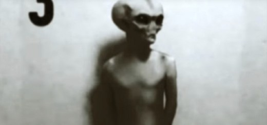 Grey aliens captured on camera