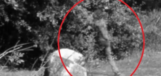 Teleportation/time travel caught on CCTV at undisclosed park