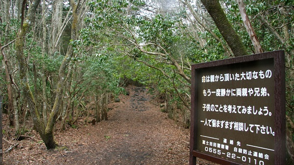 suicide-forest-japan