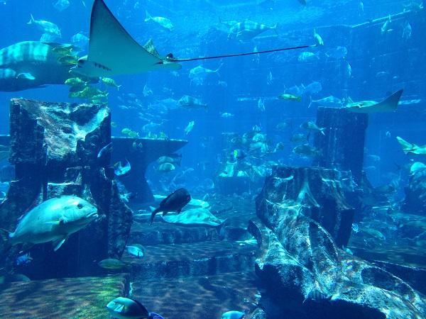Atlantis lost ruins