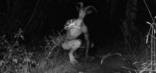 Goatman found in the woods